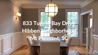 Hibben Home Tour in Mt Pleasant SC IPhone Tours with Bob