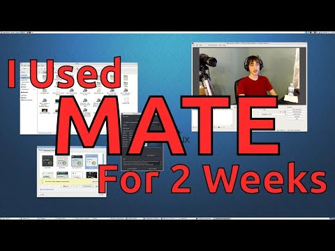 I Used MATE for 2 Weeks