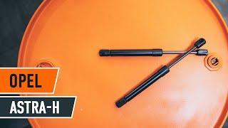 Come cambiare Coppia tamburi freno FORD FIESTA VI - video tutorial