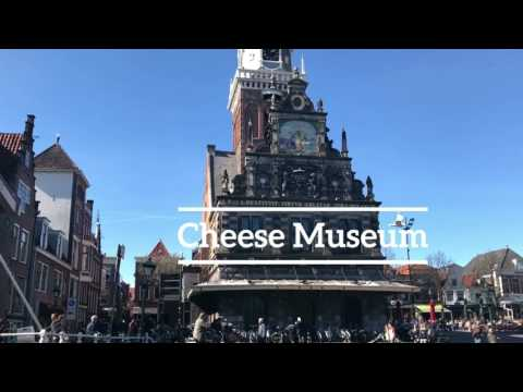Alkmaar Travel Diary