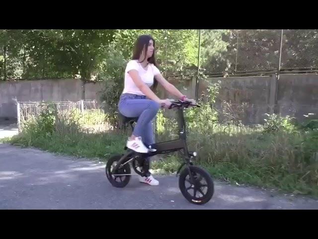 Berlin Electric Bikes - Pallas Electric E-Bikes