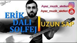 İLERİ SEVİYE-Erik Dalı-Ankaralım-Huriyem solfej (Uzun sap)