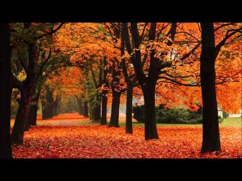 Fall - ITCZ