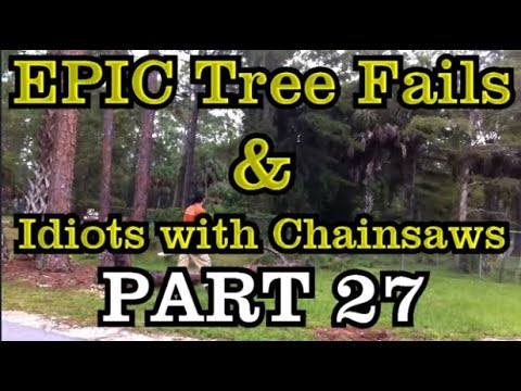 PART 27 - EPIC tree fails around the world compilation & IDIOTS with chainsaws