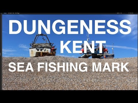 Dungeness Sea Fishing Mark