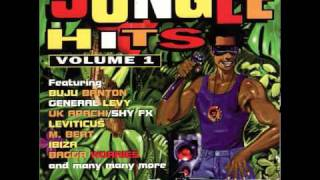 Champion Buju Banton/Miami (Jungle Hits Vol 1)