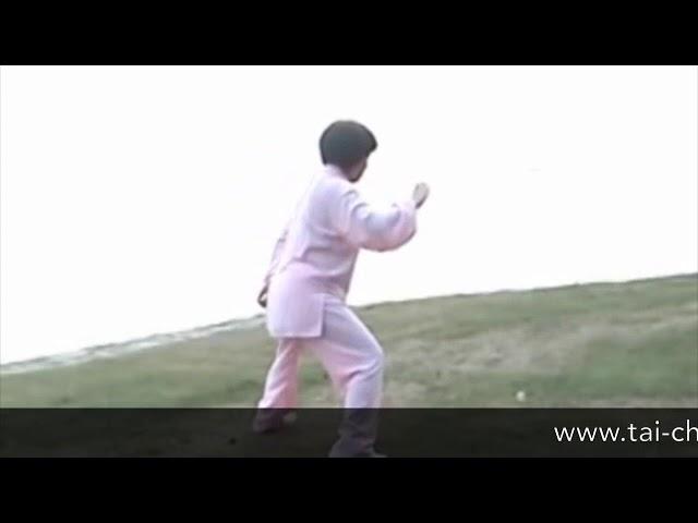 Chen Shu Li - Tai Chi style Chen Xiaojia Yilu