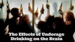 Effects of Alcohol on the Brain