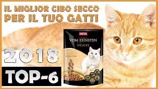 Il Miglior 🔥 Cibo secco e crocchette per gatti 😸 TOP-6 🔥