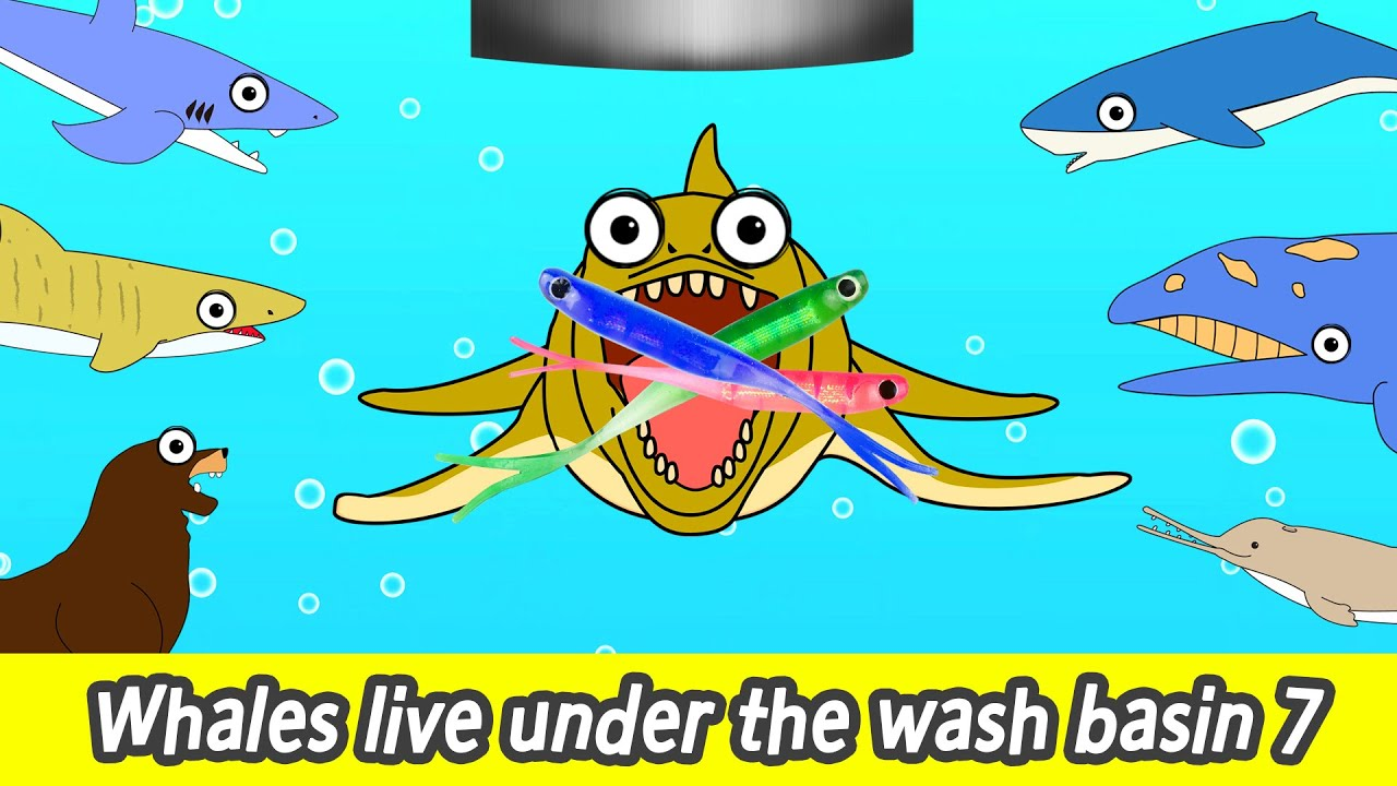 Download Whales live under the wash basin 7, kids animals animation, whales adventureㅣCoCosToy