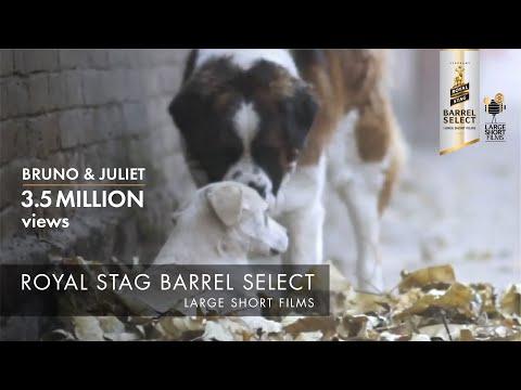 Bruno & Juliet | Imtiaz Ali | Royal Stag Barrel Select Large Short Films