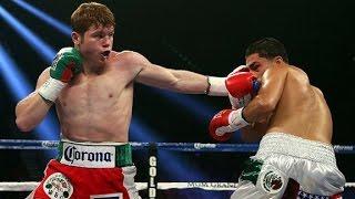 Canelo Alvarez vs Julio Cesar Chavez Jr Fight Highlights - Canelo vs Chavez Jr Highlights