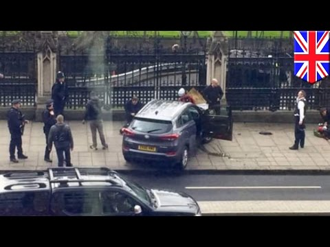 London terror attack: Police officer stabbed to death by knife-wielding suspect - TomoNews