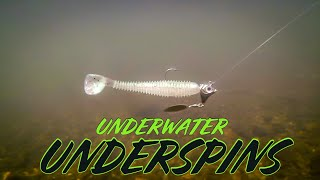 Amazing Underwater Footage of 10 Underspins and Swimbaits!!