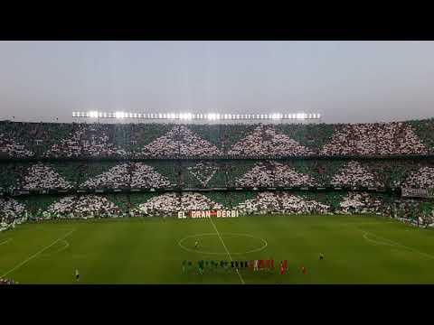 BRUTAL. Real Betis vs Sevilla FC - Himno del Betis cantado por más de 53.000 almas verdiblancas.