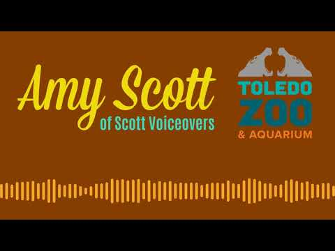 Toledo Zoo Radio Commercial - Amy Scott (ScottVoiceovers.com)