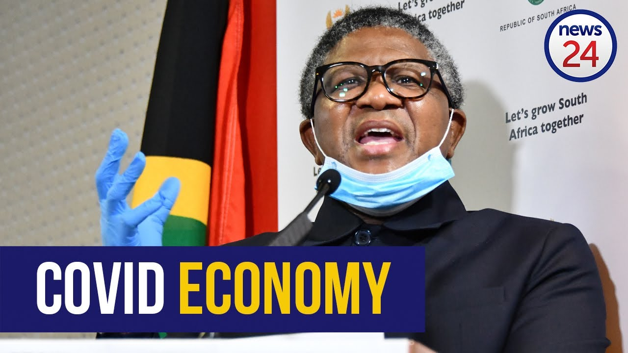 WATCH LIVE | Fikile Mbalula briefs media on government's plans to combat Covid-19 - News24