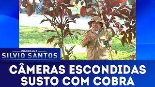 Susto com Cobra   Câmeras Escondidas (10/03/19)