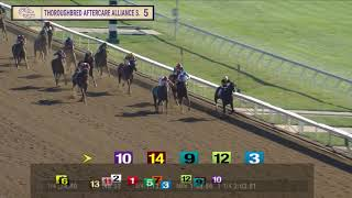 Vidéo de la course PMU THOROUGHBRED AFTERCARE ALLIANCE STAKES