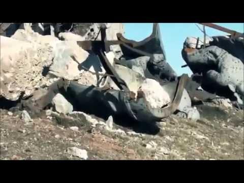 Сирия Турция Йемен Курдистан Украина