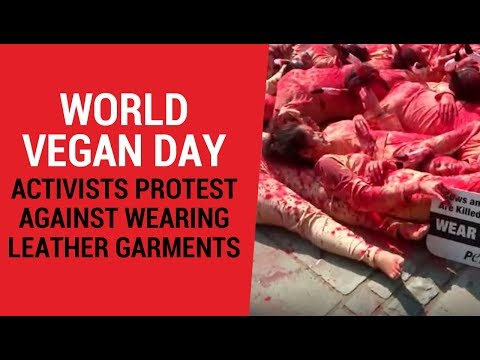 World Vegan Day: Activists protest against wearing leather garments