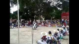 jarabe mixteco ( delegacion de huajuapan de leon)