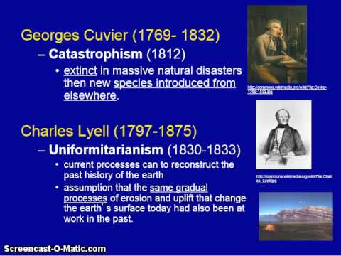 Evolution and Anthropology