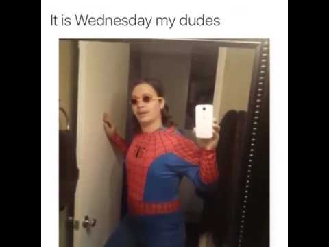It is Wednesday my dudes.
