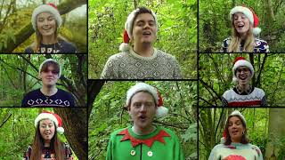 SLEIGH RIDE - The Apex Singers