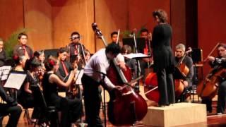 Johann Baptist Vanhal - Concierto en Re Mayor para contrabajo y Orquesta - Allegro Moderato