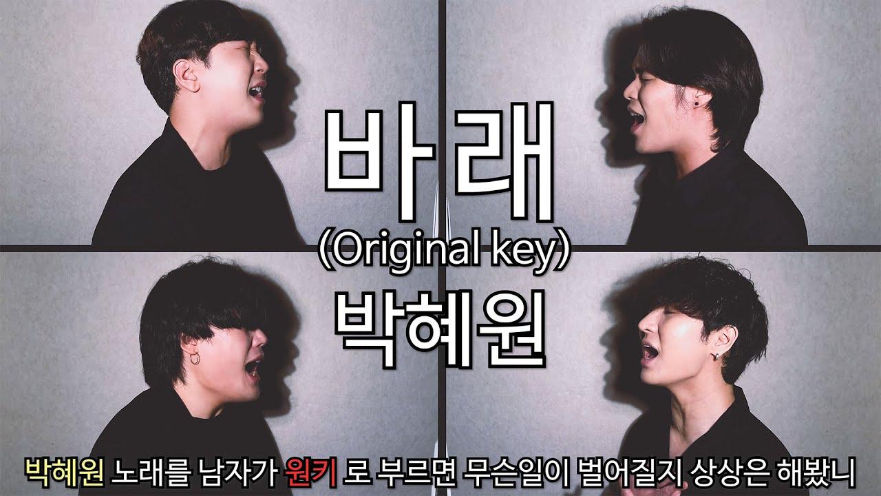 박혜원 - 바래 (Original key) cover by 마라는대로 MaRa Music ll 박혜원 노래를 남자가 🔥원키🔥 로 부르면 무슨일이 벌어질지 상상은 해봤니