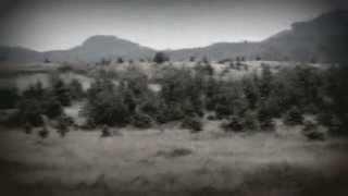 Houndstooth - Beach Bummer (demo)
