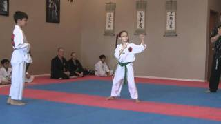 the kids Taekwondo Green belt test