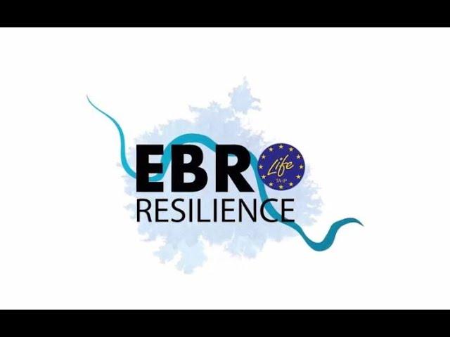 ¿Qué es Ebro Resilience?