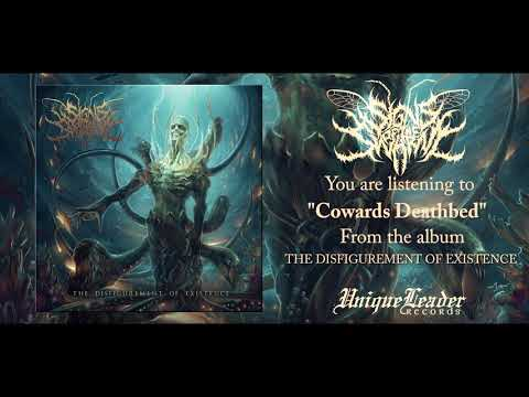 Signs of the Swarm - The Disfigurement of Existence ( FULL ALBUM HD AUDIO)