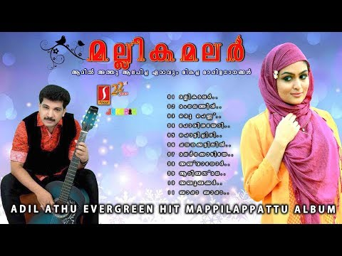 Mallika malar Athil Athu Hits |Romantic Mappilapattu album| ഹിറ്റ് മാപ്പിളപ്പാട്ടുകൾ