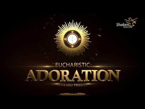 Eucharistic Adoration : Fr Michael Sparough 01
