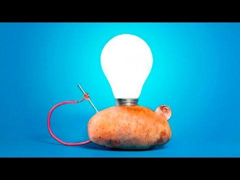 Картошка за миллион долларов - Факты в которые сложно поверить - самая дорогая картошка в мире