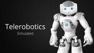 Simulated Telerobotics