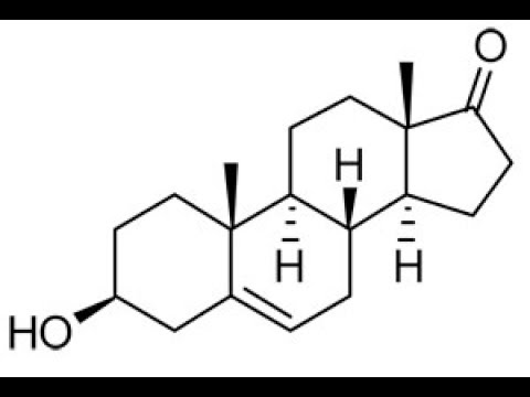 dhea's-many-benefits-immune,-muscle,-bone,-fat,-skin,-cholesterol,-insulin,-ibd,-anti-inflammatory