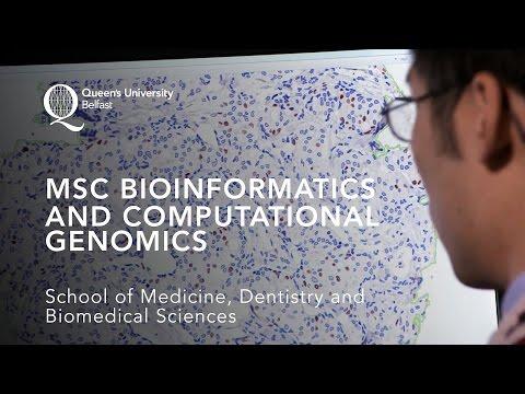 MSc in Bioinformatics and Computational Genomics
