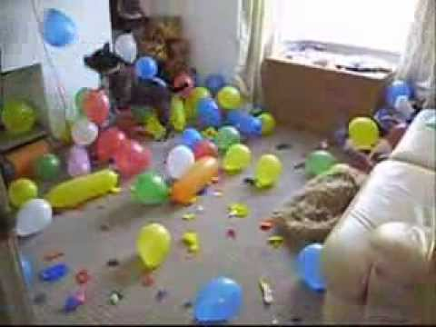 Balloon popping Crazy Dog