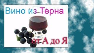 Вино из терна 1 часть