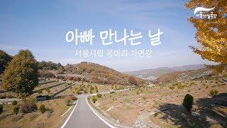 아빠를 만나러 갑니다 -서울시립 용미리 자연장-