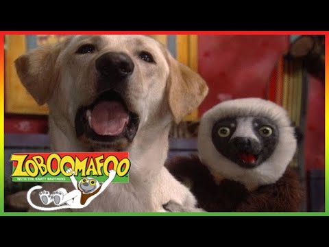 🐒  Zoboomafoo 253 - Can You Feel It? - Animal shows for kids   Full Episode   HD 🐒