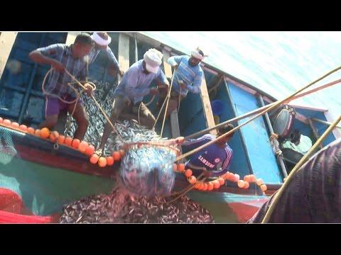 കേരളം ഉള്ക്കടലിലെ മീന് പിടുത്തം | PONNANI | TRADITIONAL BOAT FISHING DEEP SEA | KERALA