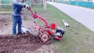 Вспашка огорода мотоблоком Беларус-09Н МТЗ ч4