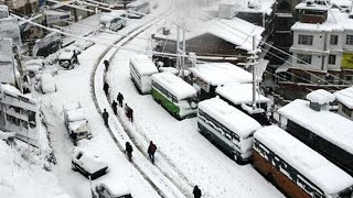 Watch | Heavy snowfall in Shimla disrupts normal life