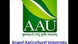 AAU at a Glance (2012-13)