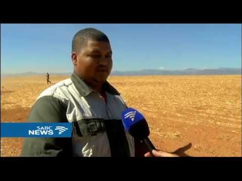 Drought-stricken W Cape farmers anxiously await winter rains